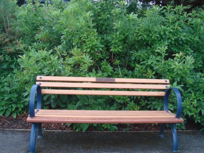Humanistic Concern Of Garden Bench